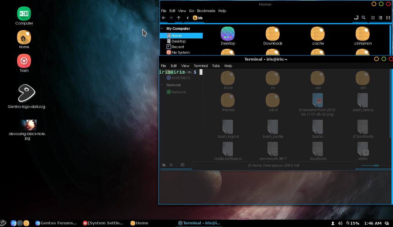 Gentoo Distro Untuk Programmer