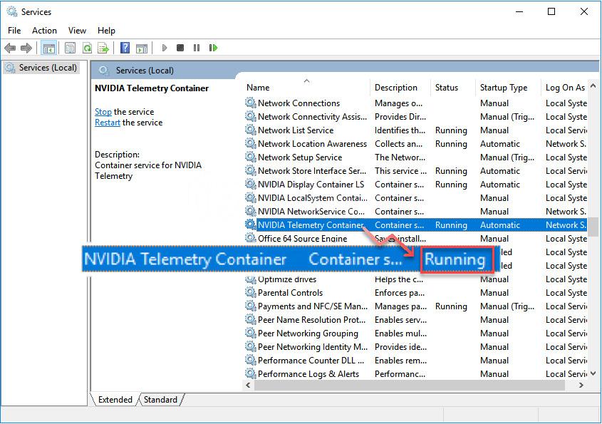 Memastikan NVIDIA Telemetry Container Running
